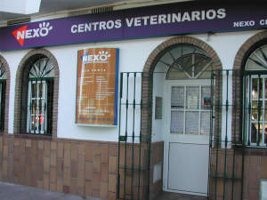 clínica veterinaria en punta umbría huelva