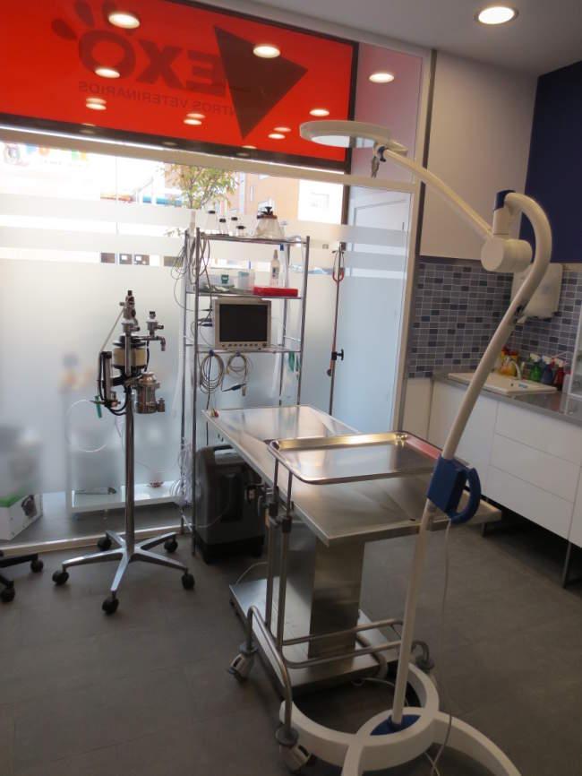 Centro Veterinario Nexo en Rivas, Madrid