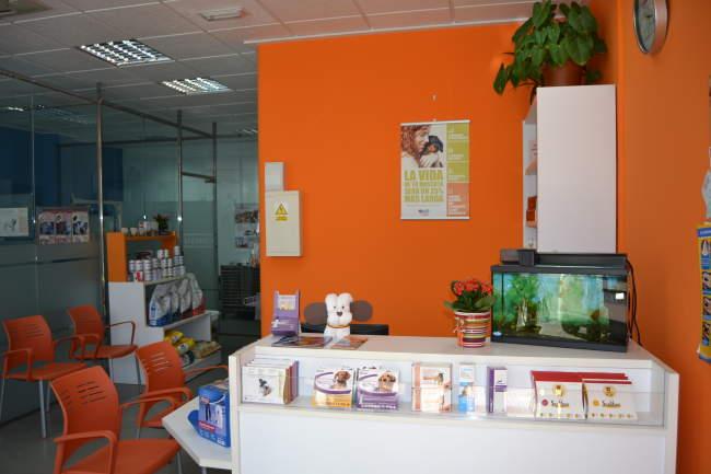 Centro VeterinarioNexo en Puerto Lumbreras, Murcia