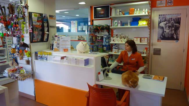 Centro veterinario en Sant Carles De La Rapita. Tarragona