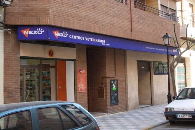Clinica Veterinaria en Albacete Nexo Veterinarios