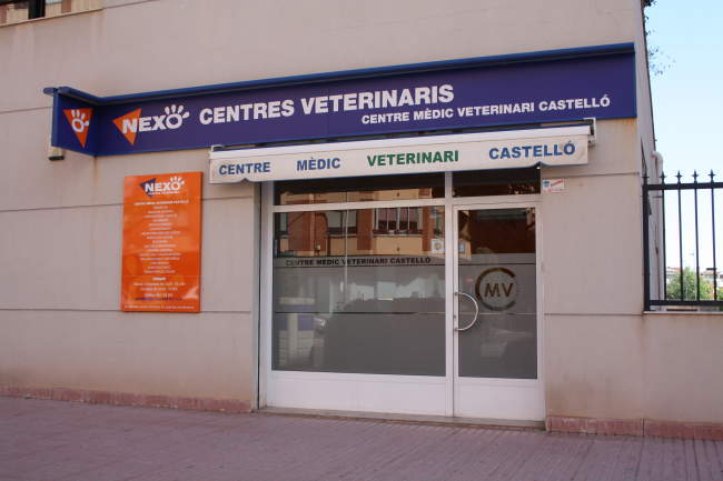 clínica veterinaria en castellón