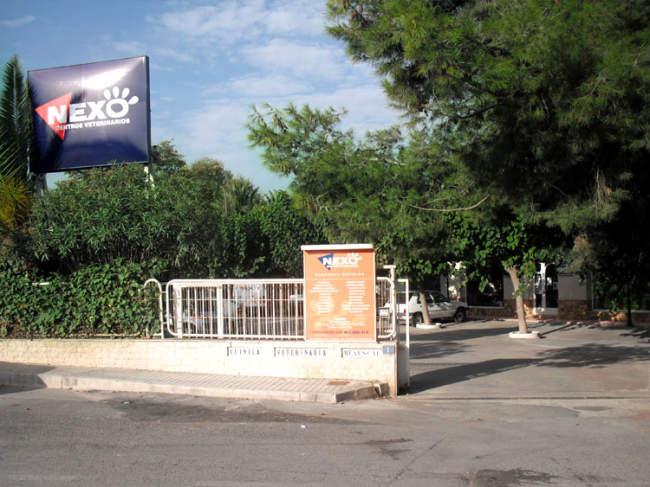 Clínica veterinaria en Novelda, Alicante, Nexo Veterinarios
