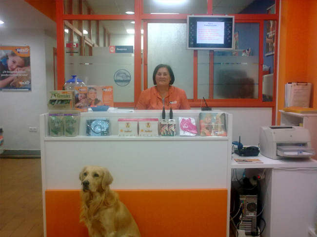 tienda de mascotas en punta umbría huelva