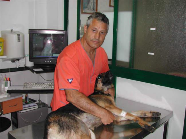 veterinarios en punta umbría huelva