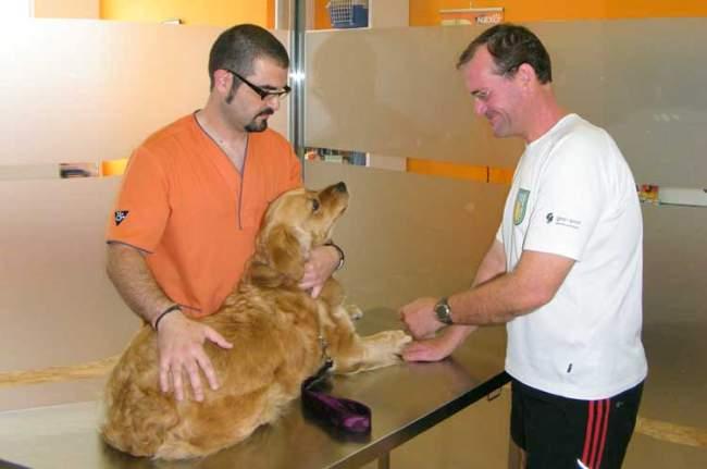 Veterinario en Olula, Almería