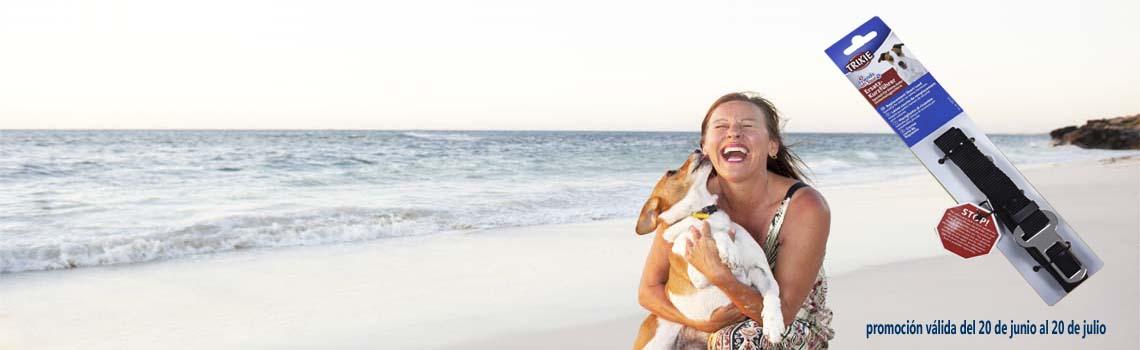 promoción revisión veterinaria gratuita verano perro gato