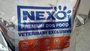 Cómo alimentar a tu mascota (errores más frecuentes)
