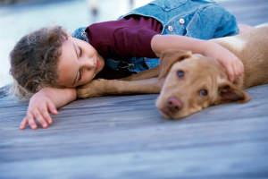 Cómo cuidar de tu mascota y no morir en el intento (Nexoplan)