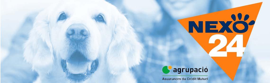 modalidades seguro mascotas Nexo