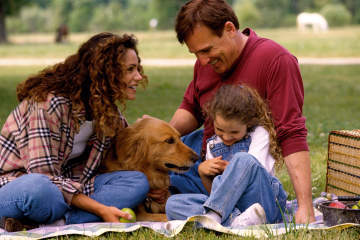 Cómo cuidar de tu mascota después del verano
