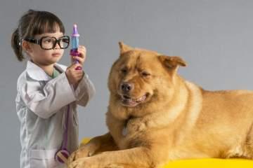 Compartir medicamentos con tu mascota ¡¡ ERRORRR!!!